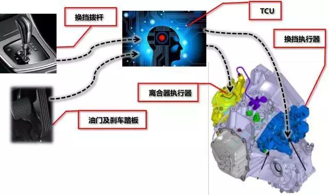 大家看到红框部分(变速箱本体、离合器盖和离合器从动盘)就是传统手动变速箱基本机构,而蓝框部分(换挡执行器、离合器执行器等智能机构)就是新增组件来负责变速箱换挡的机构,这两套结构组装在一起就是完整的智能手动档变速箱,也就是说智能手动档变速箱离合器执行是增加了电子系统TCU和换挡执行器的,所以装配智能手动档变速箱的车辆是不需要离合器踏板的。